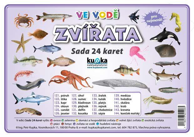 Sada 24 karet - zvířata (ve vodě)