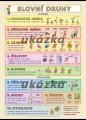 Zobrazit detail - Slovní druhy