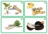 Sada 24 karet - zelenina 2