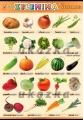 Zobrazit detail - Zelenina