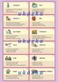 Němčina karty 2 - nepravidelná slovesa nakladatelství Kupka