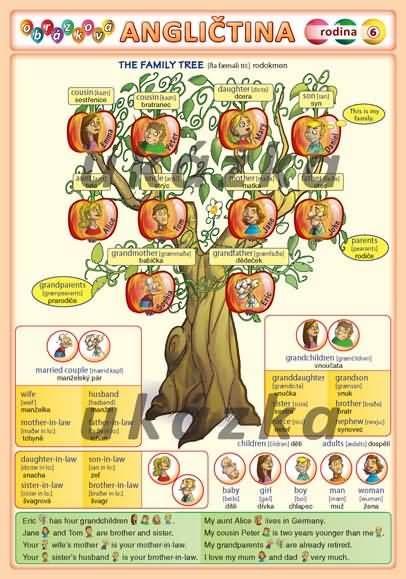 Obrázková angličtina 6 - rodina nakladatelství Kupka