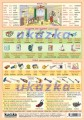 Obrázková angličtina 7 - dům, nářadí nakladatelství Kupka