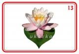 Sada 24 karet - květiny nakladatelství Kupka