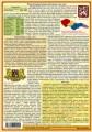 Přehled českých dějin nakladatelství Kupka