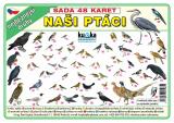 Sada 48 karet - naši ptáci