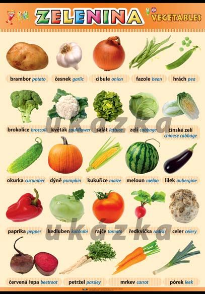 Zelenina nakladatelství Kupka