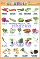 Zelenina 2