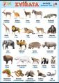Zvířata v němčině - exotická